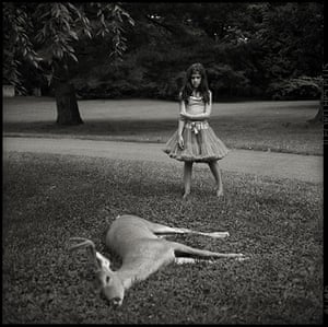 RPS print exhibition: Dead Deer. This photo was taken last summer in Princeton, New Jersey