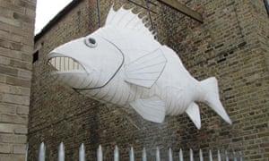 Trinity fish