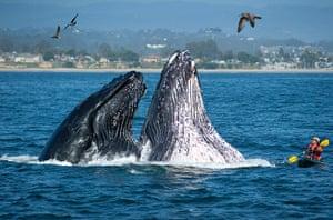 Eyewitness extra: Seabright State Beach in Santa Cruz, California