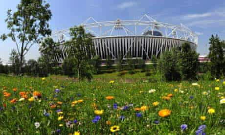 Wildflowers outside the Olympic stadium in London