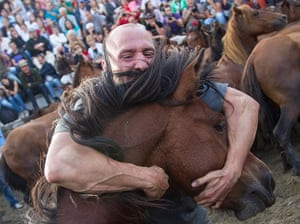 24 hours: Sabucedo, Spain: A man grabs a wild horse during a round-up of wild horses