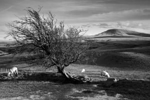 Wales book photography: Fan Foel, The Black Mountain, South-West Wales