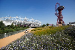 Olympic flora gallery: The Annual Meadows near the Olympic stadium