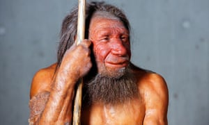 A model of a Neanderthal man in a German museum