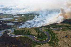 week in wildlife: A wildfire burns through the tundra and boreal forest