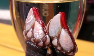 Goose barnacles and a glass of vinho verde