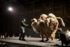 Mittwoch aus Licht: A performer addressing a pantomime camel with a microphone