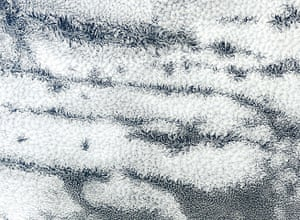 Clouds: Actinoform Clouds are only visible from space