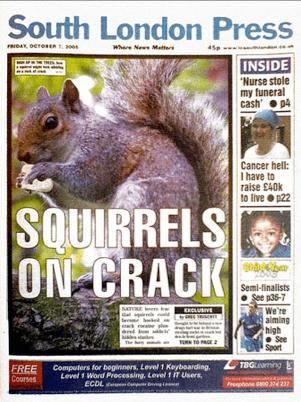 'Squirrels on crack'