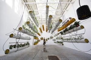 David Levene at the Venice Architecture Biennale