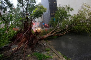 Isaac update: An uprooted tree lies across Poydras St. downtown New Orleans