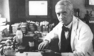 Sir Alexander Fleming pictured at work in his laboratory.