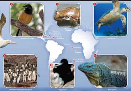 Species under threat