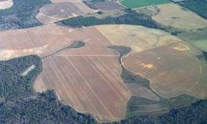 Georgia crop photo VRI technology