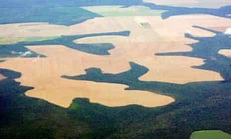 Virgin Amazon rain forest surrounds patches of deforested land prepared for planting of soybeans