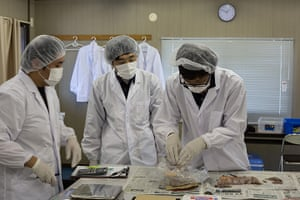 Soma, Japan: Octopus and whelks are checked for radiation contamination