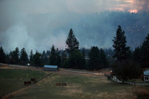 24 hours: Peachland, Canada: A wildfire burns out of control along highway 97C
