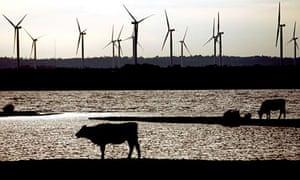 Little Cheyne Court wind farm in Camber, Kent
