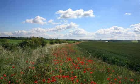 green fields land value