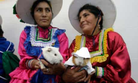 Andean woman in Peruvian guinea pig festival