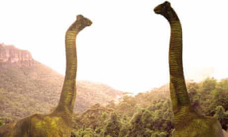 Sauropod dinosaurs