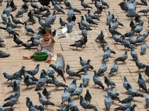 Don't feed the birds: a Nepalese child sits amongst the pigeons at Kathmandu Durbar square area in Kathmandu. The Durbar Square holds the palaces of the Malla and Shah kings who ruled over the city, is located in the centre of the capital and is listed as a UNESCO world heritage site.
