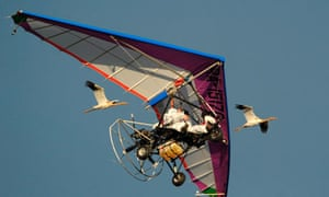 Russian President Vladimir Putin flies with cranes