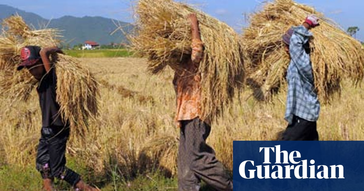 Are agricultural subsidies causing more harm than good? | Guardian