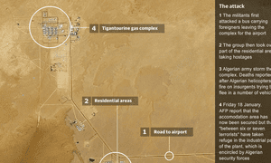 Interactive map of In Amenas gas field