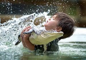 24 hours: Three-year-old boy swims with alligator, Ballarat, Australia - 17 Jan 2013