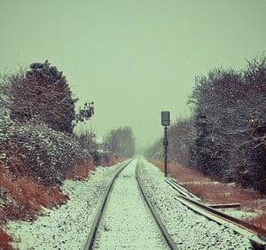 readers snow pix: Snow Tracks