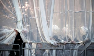 Behind the veil: Ultra Orthodox Jewish women are photographed in the women's section during the wedding of the granddaughter of Satmar Rebbe of the hasidic dynasty, in Beit Shemesh, Israel.