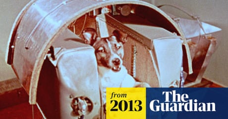 Animal astronauts: the unsung heroes of space exploration