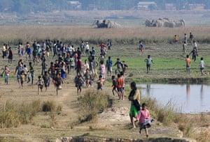 Week in wildlife: Indian villagers run as a herd of wild elephants run toward them