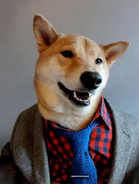 Bodhi in an open collar and tie