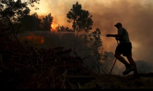 A farmer tries to put out the flames at De Hoop farm in Western Cape, South Africa. Runaway fires savaged South Africa's winelands and led to authorities declaring a code red emergency.