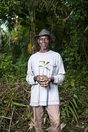 CIFOR: Protecting the Congo Basin