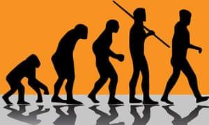 Evolution illustration