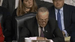 Senator Schumer