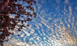 Altocumulus stratiformis Clouds layers