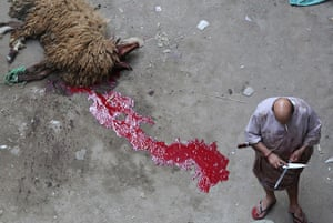 Eid al-Adha: A butcher sharpens his knife after killing a ram in Cairo, Egypt