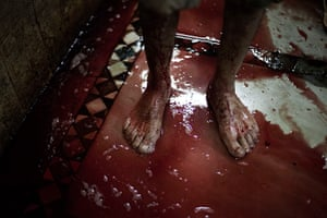 Eid al-Adha: A butcher stands in the blood of an animal sacrificed on the first day of E