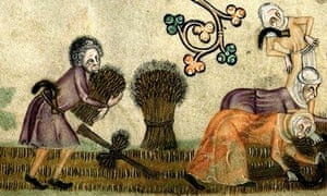 Harvest in the 14th century from the Luttrell Psalter.