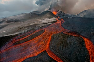 2013 WPY: 2013 Wildlife Photographer of the Year