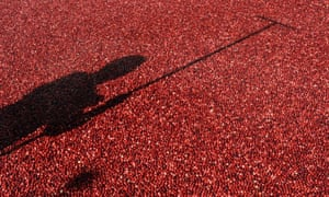 Thirsty work: a man with a rake stands amid 2,000 pounds of fresh, floating cranberries at Ocean Spray's display at Rockefeller Center in New York to promote the fruit for the holiday season.