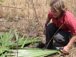 Adalovelace: Female scientist