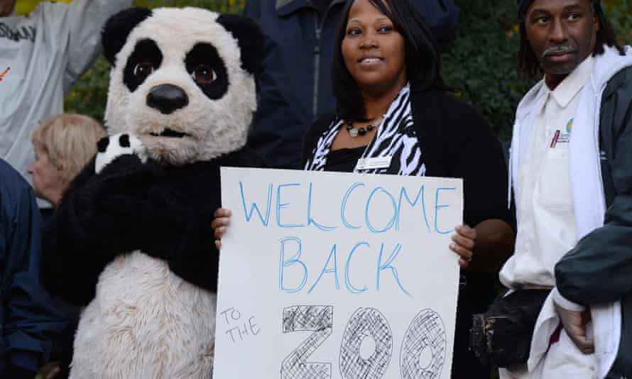 Employees at the Smithsonian National Zoological Park welcome back visitors with signs and a panda costume