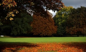 Autumn colours in Bath