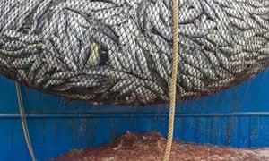 Pacific Ocean fishing