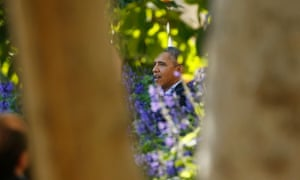 U.S. President Barack Obama is seen framed between two tree trunks as he delivers remarks on the Affordable Health Care Act in the Rose Garden of the White House in Washington, October 21, 2013.